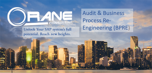 Orane's Business Process Re-Engineering Optimizes SAP